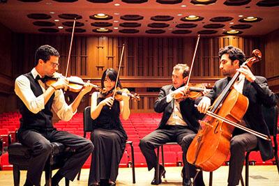Castle Hill String Quartet Mozart Eine Kleine